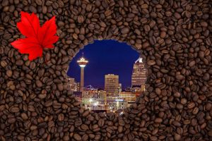 best calgary coffee roasters